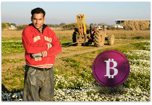 Bitcoin farmer Afghanistan