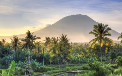 indonesia-stock-exhange-finmarketguru